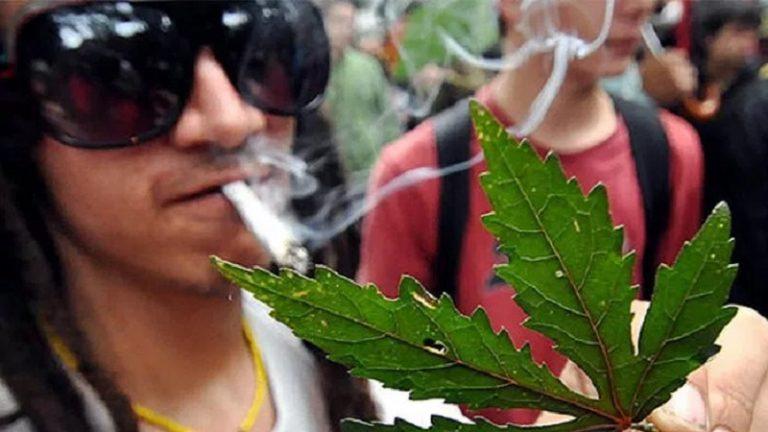 marihuano-800x450-atiempo.mx_-768x432