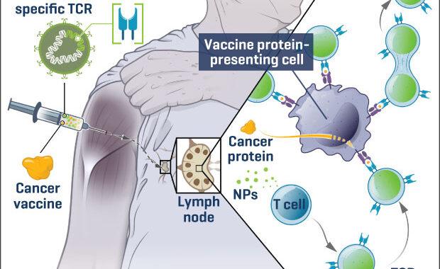 cancervacuna
